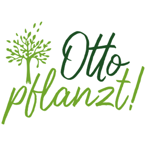 Otto pflanzt!